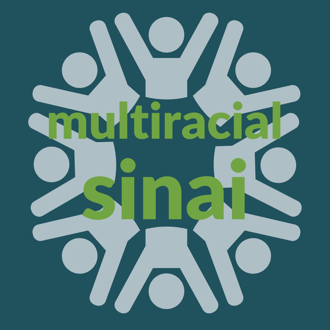 multiracial sinai profile options (1)
